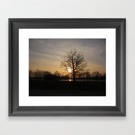 Ixonia Marsh Framed Art Print