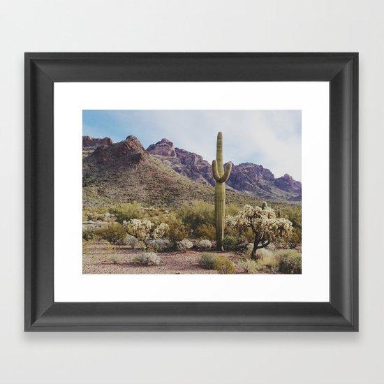 Arizona Cactus Framed Art Print