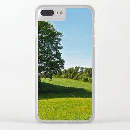 cultural landscape 11 Clear iPhone Case