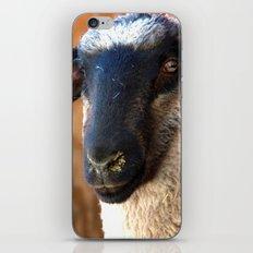 Lamb #0487 iPhone & iPod Skin