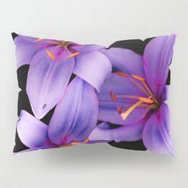 Beautiful Blue Ant Lilies, Flowers Scanography Pillow Sham