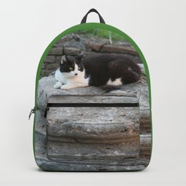 Archaeologist Cat Resting on a Roman Column Backpack