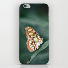Enchanted Butterfly in Green iPhone Skin