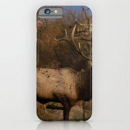 Loveland Elk iPhone Case