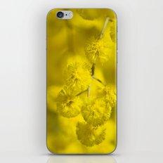 Acacia Macro iPhone & iPod Skin