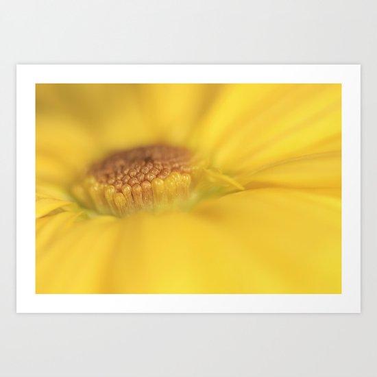 A ray of sunshine Art Print
