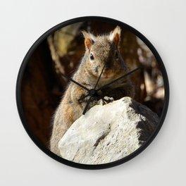 Cute Squirrel by Teresa Thompson Wall Clock