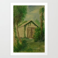Overgrown Shed WC161103a Art Print