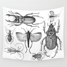 Vintage Beetle black and white drawing Wall Tapestry