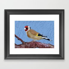 European Goldfinch Framed Art Print