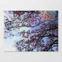 Cherry Blossoms II by roxygart