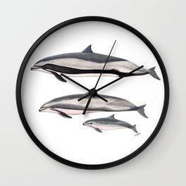 Fraser´s dolphin Wall Clock
