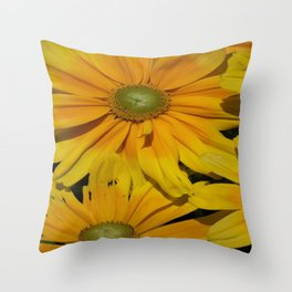 Beautiful Buttery Yellow Blooms  Throw Pillow