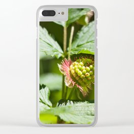 Young Salmonberry Photography Print Clear iPhone Case