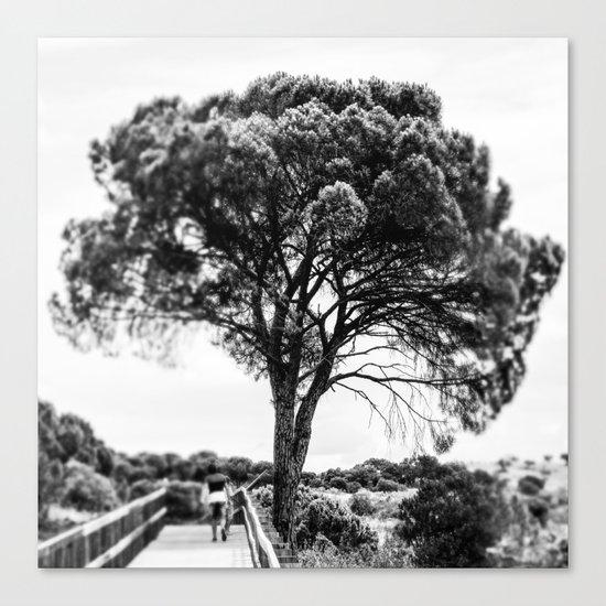 The tree life Canvas Print