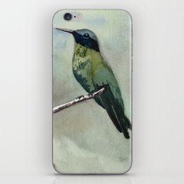 Hummingbird Sitting on a Branch iPhone Skin