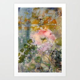 Evening Rose Art Print