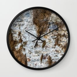 Stone Wall Structure with dried up Plants Wall Clock