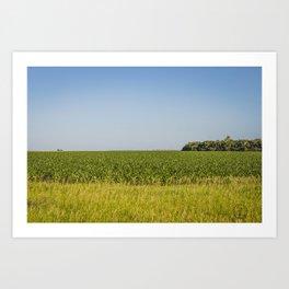 McLean County  Cornfields Art Print
