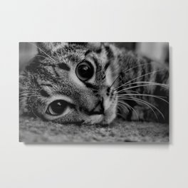 Kitty Noir Metal Print