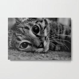 Kitty Noir Metal Print