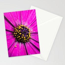Dimorphotheca Stationery Cards