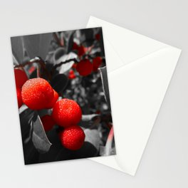 Red Beauty of Madrone Stationery Cards