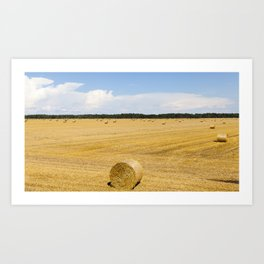 stack straw in roll Art Print
