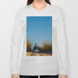 Old lighthouse from Hanseatic city of Rostock Long Sleeve T-shirt