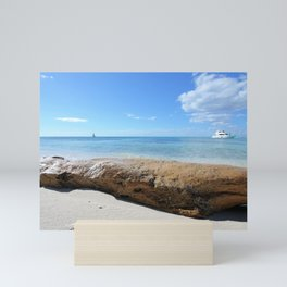 Driftwood on Isla Saona Beach Mini Art Print