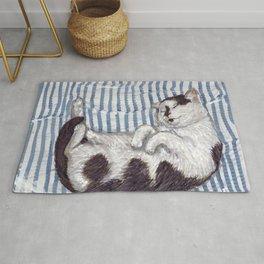 A Sleeping Cat Rug