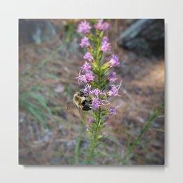 Buzzle Bee Metal Print