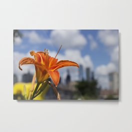 Flowers in Brooklyn Metal Print