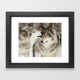 Wolf Kisses Framed Art Print