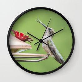 At the feeder Wall Clock