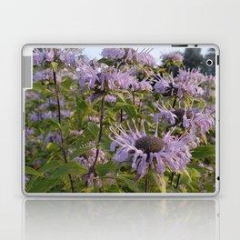 Prairie Bergamot Monarda Laptop & iPad Skin