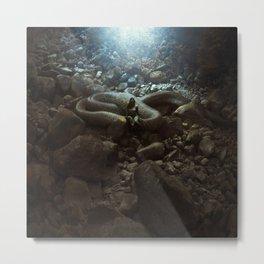 The Serpent's Lair Metal Print