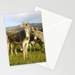 donkey band, donkey, photo, nature, perverse, band, field, lanscape Stationery Cards