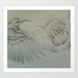 rose and  humming bird Art Print