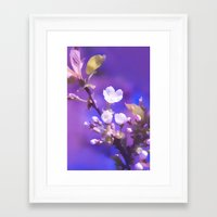 cherry blossoms Framed Art Prints featuring CHERRY BLOSSOMS by VIAINA
