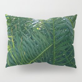 Luxurious Large Tangles Of Exotic Palm Leaves Pillow Sham