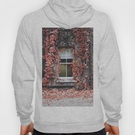 IVY - BUILDING - RED - LEAVES - WINDOW - PHOTOGRAPHY Hoody