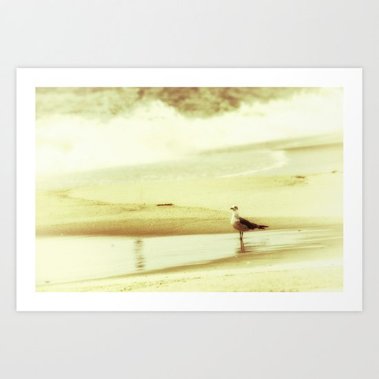 and the seagull's name was Nelson Art Print