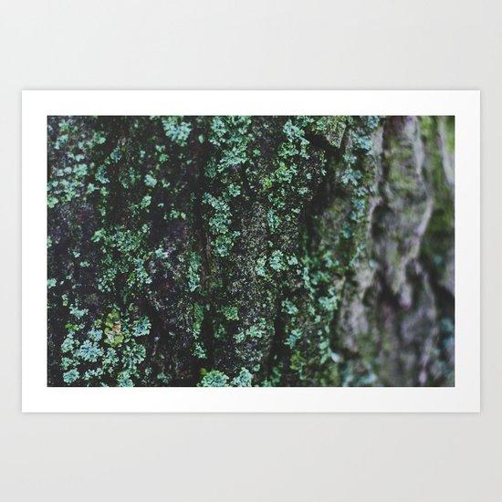 Emerald Bark Art Print