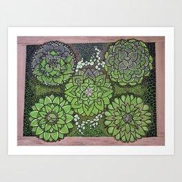 Succulents in a Box Art Print