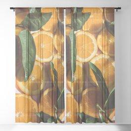 Orange Fruit Pattern Photography Sheer Curtain