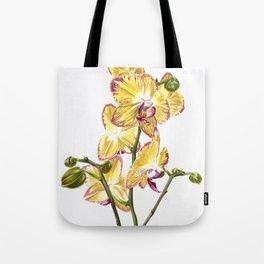 Yellow Phalaenopsis Orchid Traditional Artwork Tote Bag