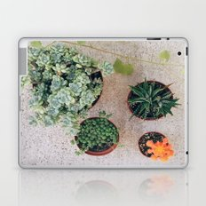 Drought Friendly Plants Laptop & iPad Skin