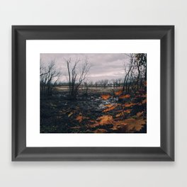 Dyke Marsh Wildlife Preserve Framed Art Print