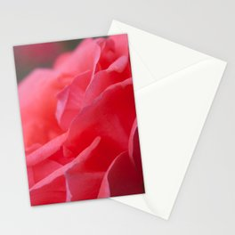 Pink Rose Stationery Cards
